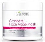 Clamanti - Bielenda Professional Cranberry Face Algae Mask 190g